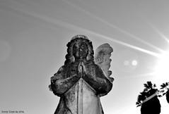 Broken Angel..2. (Lenny Lloyd da Silva) Tags: blackandwhite broken statue angel losangeles nikon cemetary stark cityofangels boyleheights blackblackandwhite d3100 nikond3100