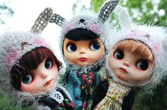 My bunnies (prettyinthekitchen) Tags: bunny fur gold one crazy long all blythe custom goldie meimei helmets fbl bl