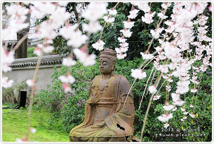 醍醐寺 (11).jpg