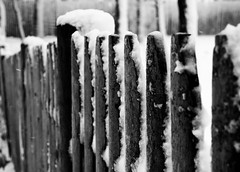 Winter Fence (sarakwhit) Tags: winter blackandwhite snow fence snowy capecod blizzard blizzardnemo winterstormnemo