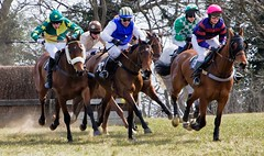 _MG_1841 (Snapper1946) Tags: horse racing april godstone pointtopoint 2013