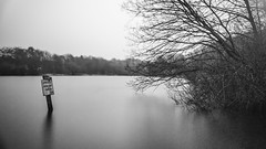 Welding Glass ND filter test (Raven Photography by Jenna Goodwin) Tags: trees reflection water glass pool photography long exposure 10 welding smooth smith stop filter nd stokeontrent staffordshire fenton