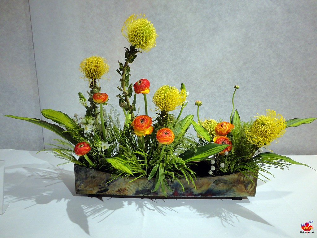The world s best photos of ikebana and ohara flickr hive