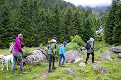 Rainwalk (Fozzman) Tags: summer vacations 2016 zillertal ziller valley alps alpen