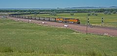 BNSF 6337 east bound coal load-Northport, Nebraska. (Wheatking2011) Tags: bnsf 6337 added their helpers northport nebraska angora subdivison headed alliance north platte river valley hills background