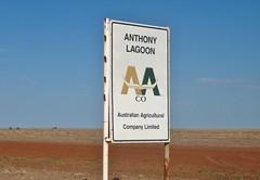 Where's The Water? (shaneblackfnq) Tags: anthony lagoon blacksoil arid outback shaneblack barkly tableland nt northern territory australia water desert
