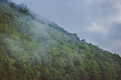 Morning Fog 226/366 (Watermarq Design) Tags: scenic fog foggymorning mountains project366 fingerlakes newyork