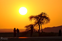 Waiting for sunset (Israel Nature Photography by Ary) Tags: canon 600d apsc israel nature desert sunset tamronaf70300mmf456divcusdif 70300 tamron silhouette