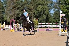 DSC_0969 (2) (ploufjf_64) Tags: paus show jumping chevaux pau 2016