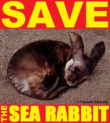 SAVE THE SEA RABBIT, official poster, design by Dr. Takeshi Yamada. Coney Island Sea Rabbit Center.  2011-01 FINAL (searabbits23) Tags: searabbit seara takeshiyamada  taxidermy roguetaxidermy mart strange cryptozoology uma ufo esp curiosities oddities globalwarming climategate dragon mermaid unicorn art artist alchemy entertainer performer famous sexy playboy bikini fashion vogue goth gothic vampire steampunk barrackobama billclinton billgates sideshow freakshow star king pop god angel celebrity genius amc immortalized tv immortalizer japanese asian mardigras tophat google yahoo bing aol cnn coneyisland brooklyn newyork leonardodavinci damienhirst jeffkoons takashimurakami vangogh pablopicasso salvadordali waltdisney donaldtrump hillaryclinton endangeredspecies save