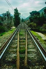 M A D E E X P L O R E R (Jonhatan Photography) Tags: linea trail train bridge canon chile explorer vsco livefolk