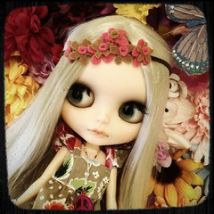 Fairleigh in a field of flowers...