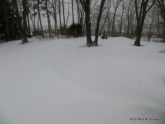Back Yard Drifts (kmkruswick) Tags: snowstormnemo