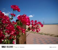 D4_海邊午茶_013 (Ache_Hsieh) Tags: travel summer bali digital indonesia island olympus e3 巴里島 zd 蜜月 印尼 1454mm2835
