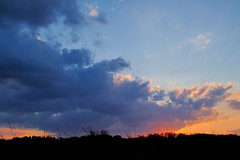 PennypackEco_02_15_2013_700_9052 (Jeff A1) Tags: sunset pennypack
