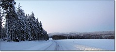 The road in Valsund (HJsfoto) Tags: road winter snow forest vinter sn soe vg musictomyeyes almostanything
