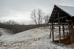 The Old Shed (johnathanwbass) Tags: trees winter snow cold field grass clouds barn cow nikon cloudy snowy hill shed pasture snowing shelter d80