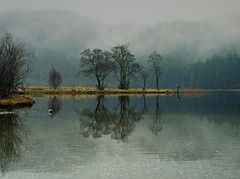 The Photographer (explore) (kenny barker) Tags: scotland explore trossachs scottishlandscape lochchon greenscene panasoniclumixgf1 welcomeuk kennybarker