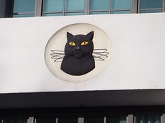 Day 72 of 365 (Jo Finn1) Tags: cat artdeco morningtoncrescent carrerascigarettefactory egyptianrevivalarchitecture