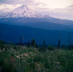the lonely mountain (after october) Tags: summer mountain film oregon mediumformat cascades mthood pacificnorthwest lookoutmountain hasselblad500cm fujiprovia400