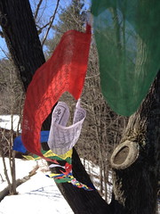 hung up my flags today (jessamyn) Tags: vermont flags prayerflags randolph tibetanprayerflags randolphvt
