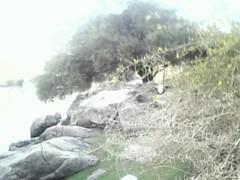 Photo0163 (ashrbob) Tags: