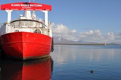 fragment (Viktorija Misiunaite) Tags: red mountain bird water boat iceland watching reykjavik clear whale