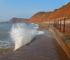 On Sidmouth Shore (Messent) Tags: pictures ocean sea england water coast seaside poetry waves seagull cliffs sidmouth landscapedetail poetryandpicturesinternational poetryforall