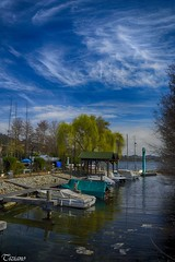 the small harbor (Tizi@no56 (painting with light)) Tags: trees sky panorama lake alberi clouds river landscape boats lago harbor nuvole piers fiume small barche cielo weepingwillow moli porticciolo salicepiangente lagodiviverone d7100 anzasco photographyforrecreation nikond7100 rememberthatmomentlevel1 rememberthatmomentlevel2 rememberthatmomentlevel3