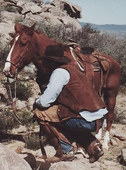 CATTLE COUNTRY (AZ CHAPS) Tags: ranch arizona horse hat leather spurs cowboy boots wranglers gear chaps saddle tack