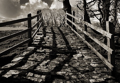 Stoney Shadows (Daren Smith) Tags: bridge shadow blackandwhite bw nikon shadows yorkshire d200 cobbles drystonewall drystone yorkshiredales hawes nikoncapturenx