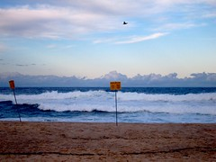 (rebe) Tags: ocean blue light people beach sydney bronte endofsummer
