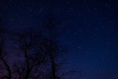 DSC_0242 (djwakeman) Tags: sky night stars nikon open 14 wide 24mm meteor d800 lyrid