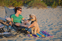 Talk To Me (RoamingTogether) Tags: venice beach nikon florida wheatenterrier colette softcoatedwheatenterrier nikond90 nikon181053556 browhardpawparkbeach