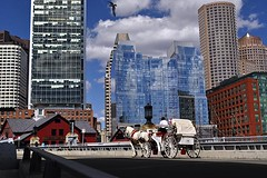 Horse on a Bridge (AntyDiluvian) Tags: bridge horse boston downtown carriage massachusetts financialdistrict horsedrawn channel fortpointchannel summerstreet congressstreet