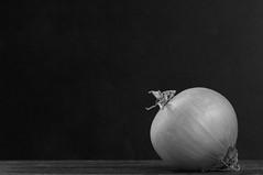 onion (postbear) Tags: blackandwhite food kitchen vegetables yellow skin vegetable onions ingredients onion peel edible ingredient robfordasshole destroycraigslist craigslistpromotesbestiality craigslistendorsesbestiality craigslisttoleratesbestiality craigsliststaffmanagementandcorporateownersaredograpingcriminals robfordisanasshole robfordandstephenharperaredisgustingbigots robfordisalyingsackofshit allconservativesarefilth likeallbulliesrobfordisachickenshitcoward robfordisafraidofeverything robfordisastupidbitch marywalshformayororprimeminister thenewmapfunctionisterrible robfordhasneonazisforfriends foundoutreadingisdifficult robfordisadisgustingfuckingthief thenewuploaderisalsoterrible helpourformermayorisastupidclown formermayorrobfordlikescottaging call911theformermayorsbeatinghiswifeagain richwhiteconservativesbuyjusticeyetagain robfordsexuallyassaultswomen craignewmarkrapesdogs