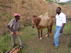 Farmer with Last Remaing Wood - Haiti (UNEP Disasters & Conflicts) Tags: haiti haitidominicanrepublicborderzone mission conflict disaster development climatechange deforestation desertification floods overfishing erosion developmentprojects disasterriskreduction farmer border ecp environmentalcooperationforpeacebuilding cotesudinitiative cdi csi disasters conflicts conservation greeneconomy mdg sdg unitednations drr un renewableenergy sustainabledevelopment environment southdepartment pcdmb unep unenvironment