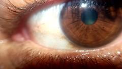 Look! (jhonathanwillian) Tags: parte eyes eye body brasil brazil southamerica human olho castanho riodejaneiro humano anatomy macro lens macrolens
