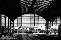Hull paragon railway station. (MAMF photography.) Tags: art august blackandwhite blackwhite britain bw biancoenero beauty blancoynegro blanco blancoenero city dark england enblancoynegro eastyorkshire flickrcom flickr google googleimages gb greatbritain greatphotographers greatphoto hull hu1 hullparagonstation inbiancoenero image mamfphotography mamf monochrome nikon noiretblanc noir negro north nikond7100 northernengland nature old photography pretoebranco photo railway railwaylines railwaystation sex schwarzundweis schwarz train uk unitedkingdom upnorth yorkshire zwartenwit zwartwit zwart