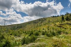 Bezdrzewne stoki Baraniej Góry (czargor) Tags: beskidy beskidslaski mountains mountainside baraniagora sightseeing