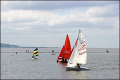 West Kirby Wirral  230816 (34) (over 4 million views thank you) Tags: westkirby wirral lizcallan lizcallanphotography sea seaside beach sand sandy boats water islands people ben bordercollie dog beaches reflections canoes rocks causeway yachts outside landscape seascape
