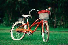 """Electra bike """"Cherry Bomb"""" (Lumowelt) Tags: electra electrabike cherry bicycle cycling green red grass saintpetersburg russia       details tuning bike"""