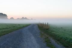 Nebel ber den Feldern (G_Albrecht) Tags: bodennebel landschaft morgennebel nebel umwelt verkehr weg wetter wiese