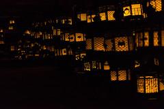 Illuminated lanterns at Kasuga Grand Shrine (basair) Tags: red nara honshu japan kasugataishashrine famousplace surfacelevel shrine templebuilding gate japaneseculture metal ornate lantern hanging shinto religion builtstructure inarow cultures architecture outdoors taisha asia old ancient buddhism history unescoworldheritagesite entrance nonurbanscene traveldestinations tranquilscene oldfashioned illuminated night indoors decoration design electriclamp decor glassmaterial glowing art backgrounds energy blackcolor celebration firenaturalphenomenon equipment