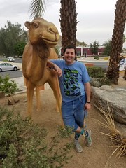 September 19, 2016 (4) (gaymay) Tags: california desert gay love riversidecounty coachellavalley geocache search palmdesert camels statues artclimbers