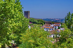 123 - Obidos le chemin de ronde (paspog) Tags: obidos toits roofs decken tuiles tiles portugal villagemdival medievalvillage