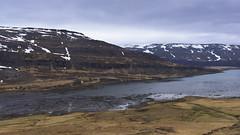 a never ending succession of fjords (lunaryuna) Tags: iceland northwesticeland westfjords fjord landscape panoramicview mountainrange therootofafjord spring season seasonalchange weather sky overcast weathermood journey travel ontheroadagain lunaryuna