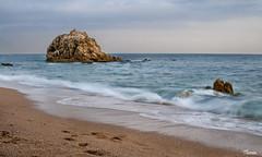 Roca Grossa - Calella (Gatodidi) Tags: roca grossa calella maresme playa arena mar cielo seda olas agua costa mediterraneo orilla espuma piedra barcelona nubes azul catalua catalunya landscape paisaje paisatge spain espaa nikon d90 bancos atardecer crepusculo rojo