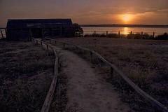 EL CAMINO (Susana M.L.) Tags: sunset atardecer naturaleza nature airelibre ocaso dehesa camino campo