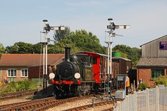 "W8 ""Freshwater"" - Havenstreet (GreenHoover) Tags: isleofwight iow isleofwightrailway isleofwightsteamrailway iowsteamrailway iowsr steamloco steamlocomotive terrier w8 w8freshwater freshwater goods freight islandsteamdays havenstreet"